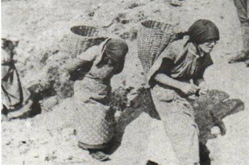 """Comeglians: intitolazione di una piazza alla """"Portatrici Carniche"""", sui monti con in spalla gerle di 30 chili"""